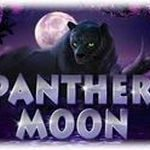 http://vulcanneonion.com/panther-moon/